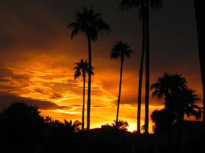 Poster featuring the photograph Fiery Sunset by Deb Halloran