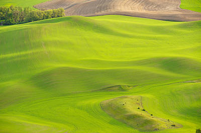 Fileds Of The Palouse Poster