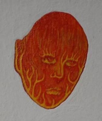 Fire Face Poster by Steve  Hester