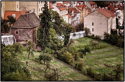 Firenze In Prague Poster by Joan Carroll