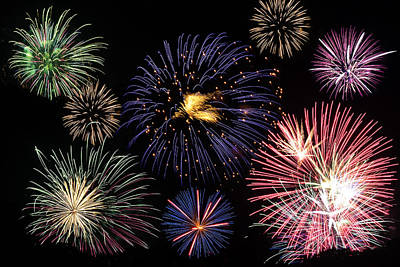 Firework Celebration  Poster by Sammuel Hernandez