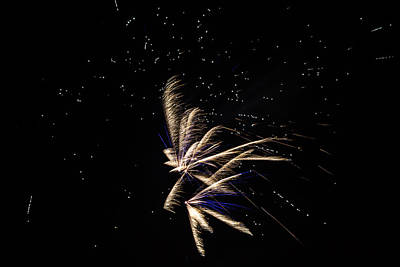 Fireworks - Dragonflies In The Stars Poster