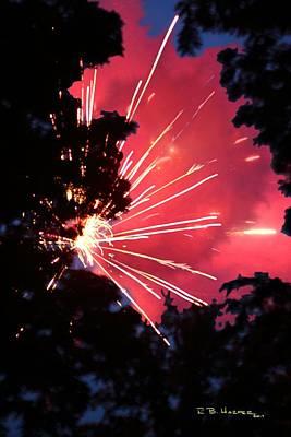 Fireworks Forest Poster