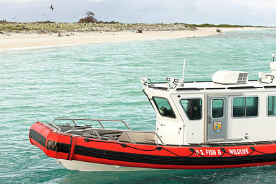 Fish And Wildlife Boat At Eastern Island Poster by Daisy Gilardini