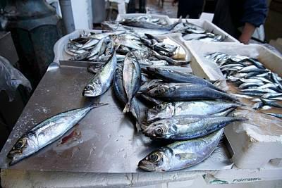 Fish Market In Porto Poster