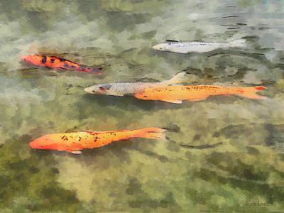 Fish - School Of Koi Poster by Susan Savad