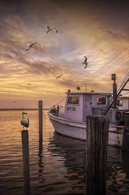 Fishing Boat And Gulls At Aransas Pass Harbor Poster