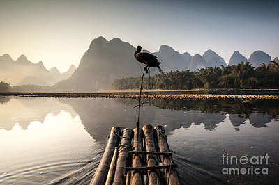 Fishing On Li River Poster