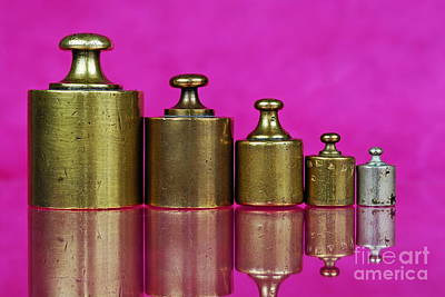 Five Copper Weights In A Row Poster by Sami Sarkis