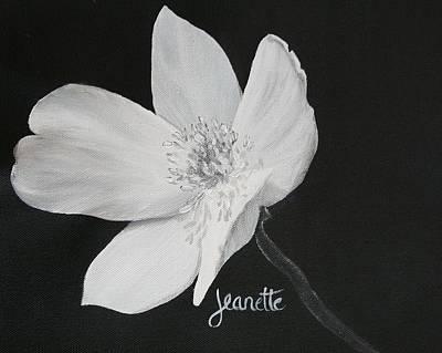 Five Petal Rose Poster