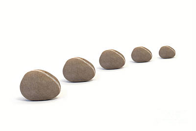 Five Queuing Pebbles Against White Background Poster