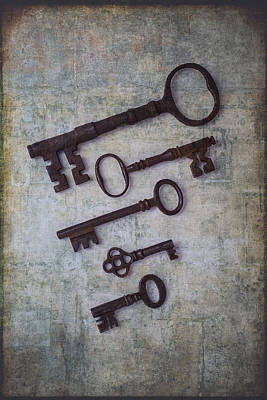 Five Rusty Keys Poster by Garry Gay