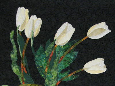 Five White Tulips  Poster by Lynda K Boardman