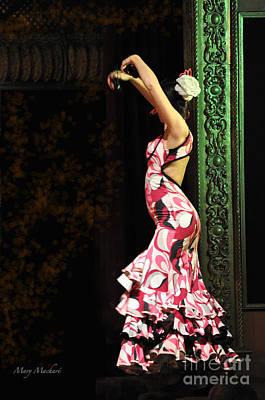 Flamenco Series #8 Poster
