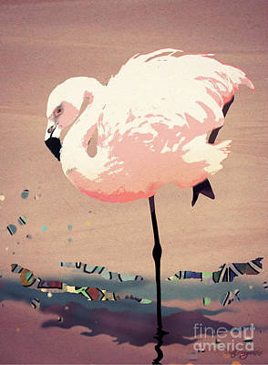 Flamingo Dance Poster