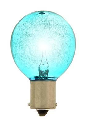 Flash Bulb Poster by Jim Hughes