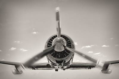 Flight In Black And White Poster by Rudy Umans