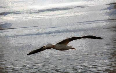 Flight Of A Seagull Poster by Georgi Dimitrov