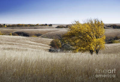 Flint Hills Autumn 013 Poster by Fred Lassmann