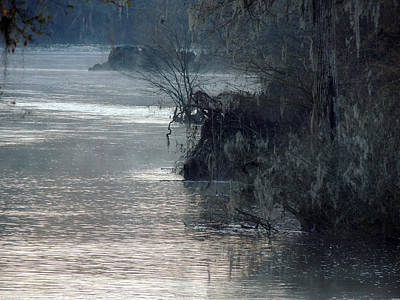 Poster featuring the photograph Flint River 28 by Kim Pate