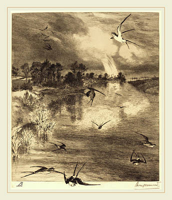 Félix Bracquemond French, 1833-1914, The Swallows Poster by Litz Collection