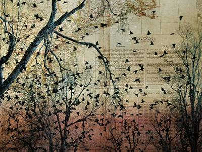 Flock Of Birds Collage Poster by Gothicrow Images