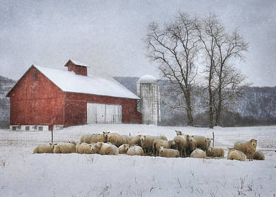 Flock Of Sheep Poster by Lori Deiter