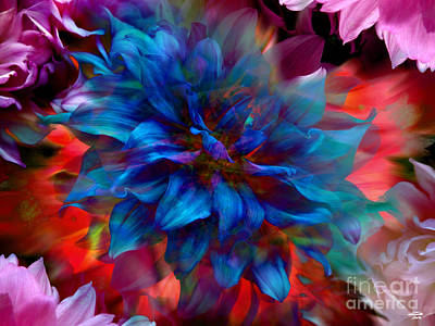 Floral Abstract Color Explosion Poster by Stuart Turnbull