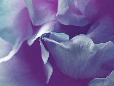 Poster featuring the photograph Abstract Blue Purple Green White Flowers Art Work Photography by Artecco Fine Art Photography