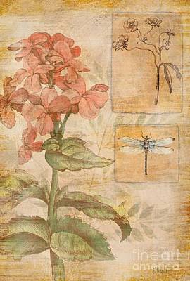 Floral Dragonfly Poster by Paul Brent