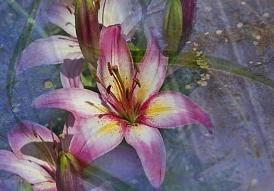 Floral Fantasy V Poster by Barbara Smith
