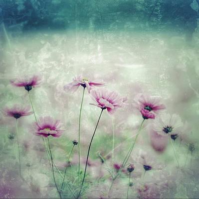 Floral Grunge Poster by Amanda Lakey