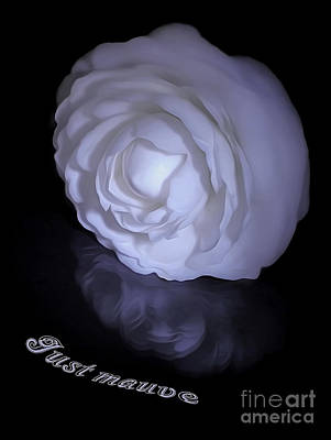 Floral Reflections 4 - Camellia Poster