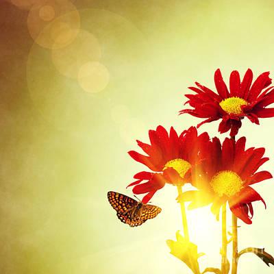 Floral Spring II Poster