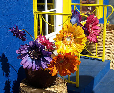 Flores Colores Poster