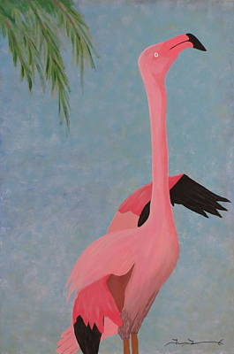 Florida Flamingo Poster by Tim Townsend
