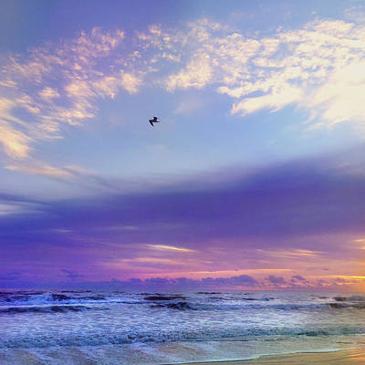 Florida Sunrise - New Smyrna Beach Poster by Joann Vitali
