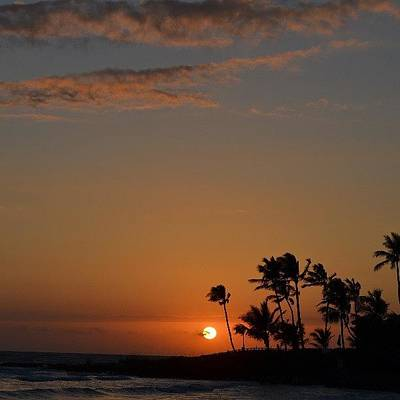 Florida Sunsets Poster