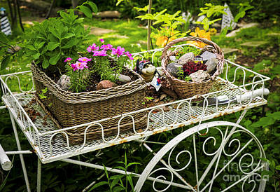 Flower Cart In Garden Poster