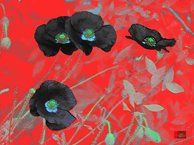 Flower Garden -  Four Black Poppies On Red Poster