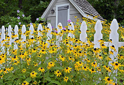 Flower Garden Poster by Susan Leggett