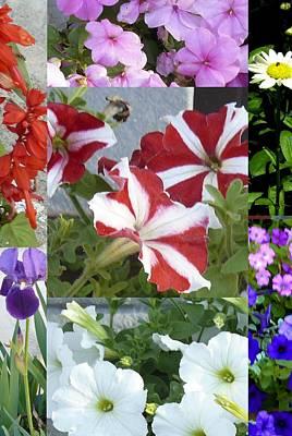 Flower Gardens Montage Poster