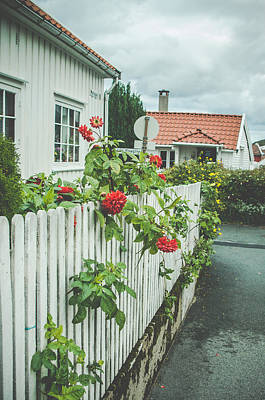Flower On The Fence Poster by Mirra Photography