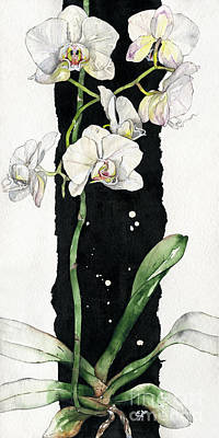 Poster featuring the painting Flower Orchid 05 Elena Yakubovich by Elena Yakubovich