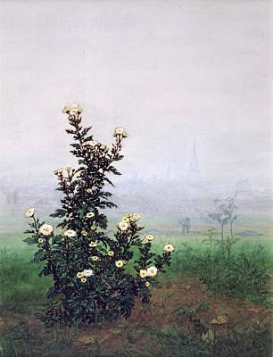 Flowering Chrysanthemum With Worker Poster