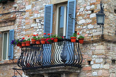 Flowers 3- Assisi Poster by Theresa Ramos-DuVon