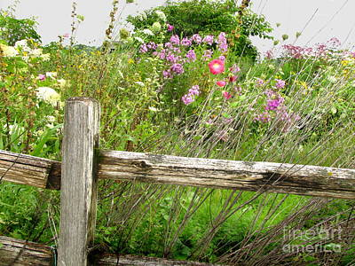 Flowers And Fences Poster by Marilyn Smith