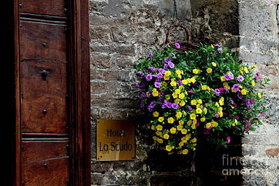 Poster featuring the photograph Flowers - Assisi by Theresa Ramos-DuVon