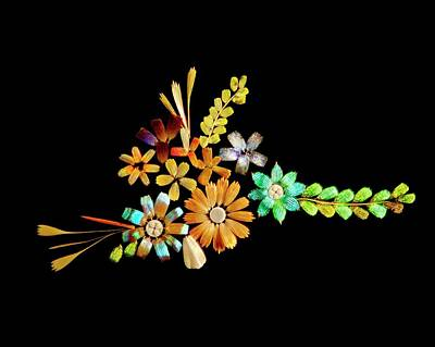Flowers Created From Butterfly Scales Poster by Steve Lowry