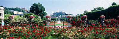 Flowers In A Formal Garden, Mirabell Poster by Panoramic Images